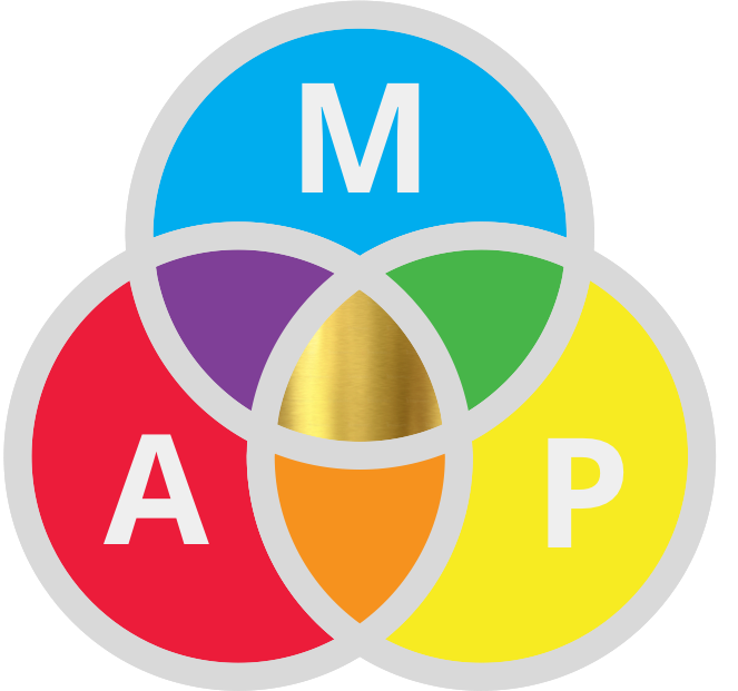 MAP Meaning Achievement Positive Emotion circles